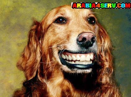 اجمل ابتسامة فى العالم بالصور
