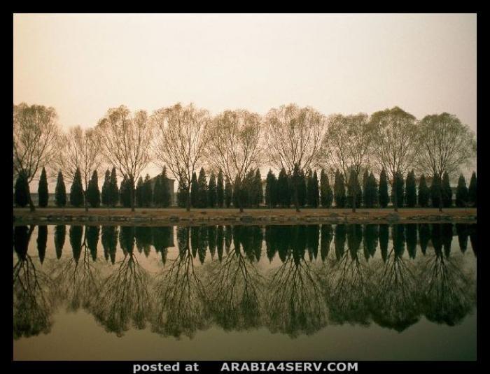 صور طبيعيه جميله