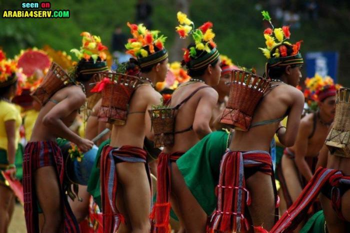 صور مهرجانات