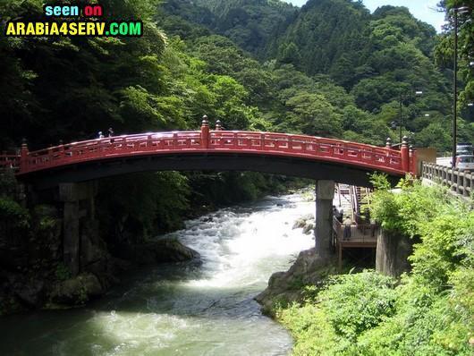 صور - اطول - اغرب - اجمل - اعلى الجسور فى العالم