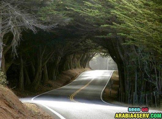 صور طرق غريبة جميلة عجيبة مدهشة حول العالم