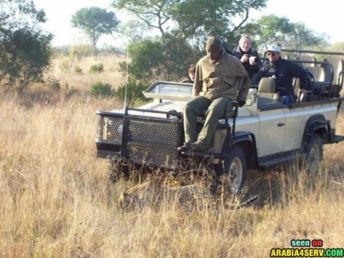 صور رحلات السفارى فى افريقيا