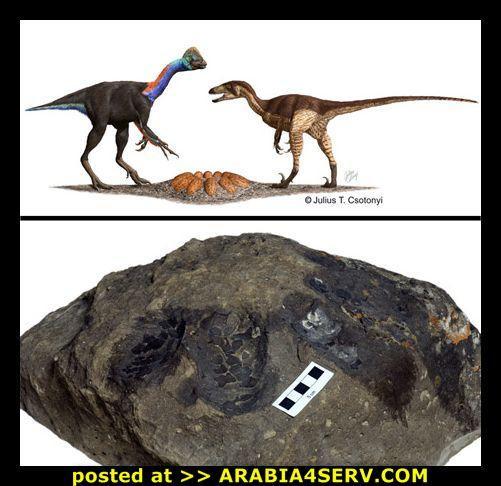 صور ديناصورات عملاقه نادرة اول مرة تشوفها