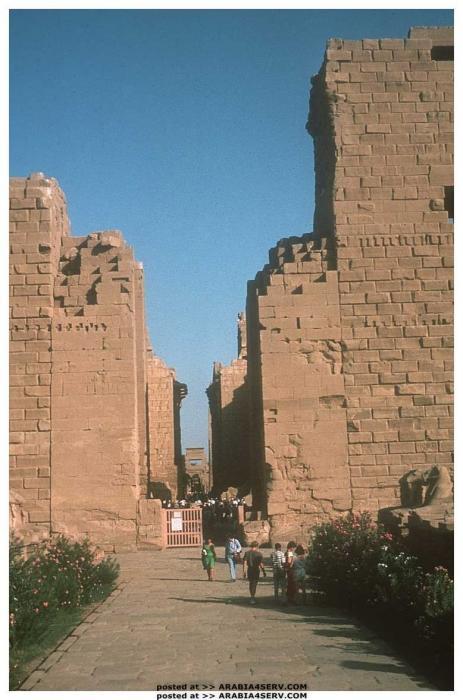 خلفيات و صور طبيعية من مصر