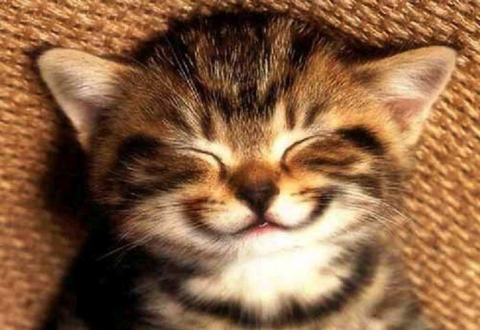 صور ابتسامات و ضحكات متنوعة جميلة كيوت رائعة جدا