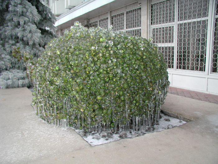 صور الثلوج في الشتاء حول العالم