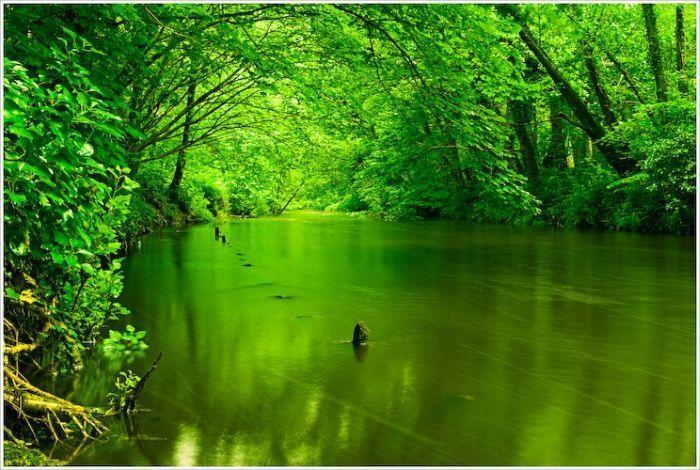 Wallpaper 1440x1280 Px Abstract Love Nature: مجموعة من الصور الجميلة