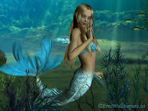 صور عروسة البحر صور نادرة غريبة