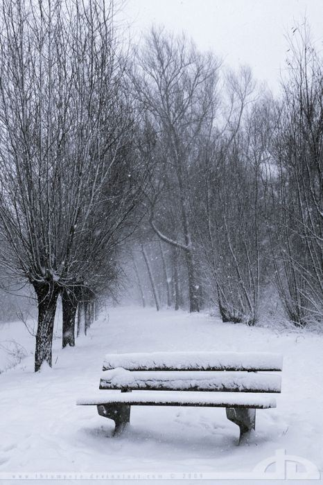 صور جميلة لفصل الشتاء
