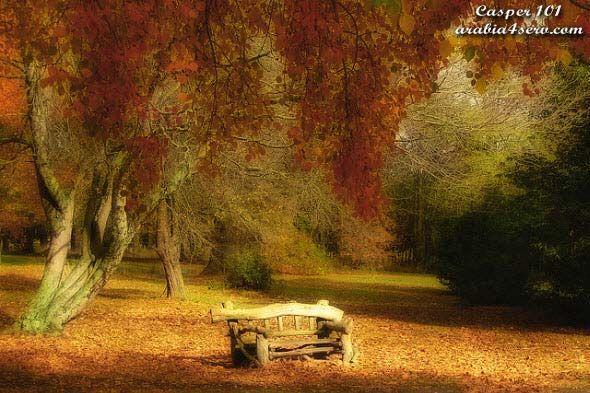 صور جميلة من فصل الخريف